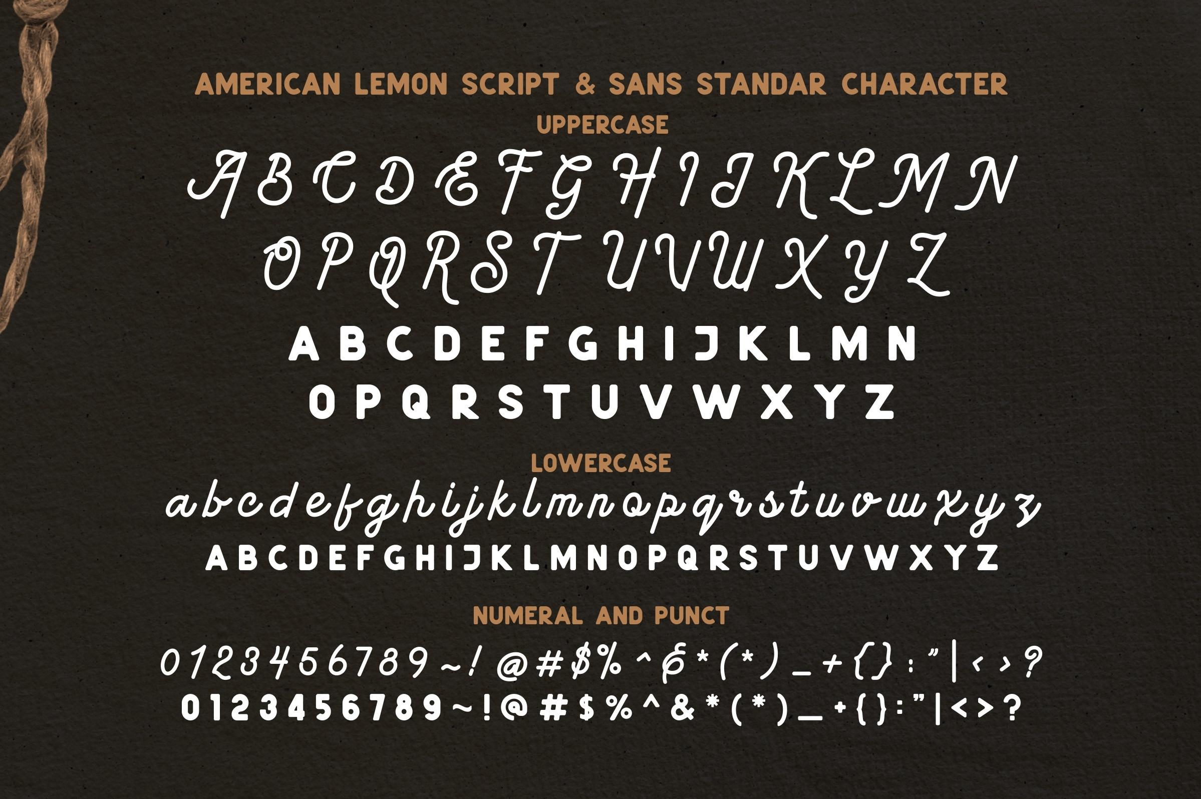 American Lemon Font Duo example image 9
