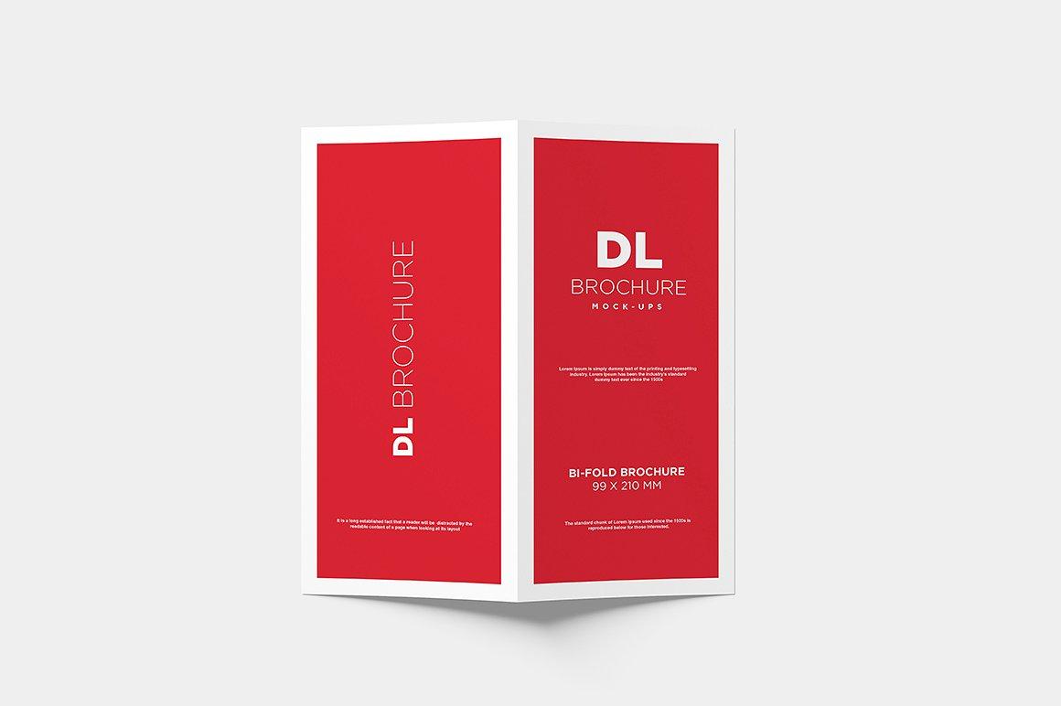 DL Bi-fold Brochure Mock-Up example image 2
