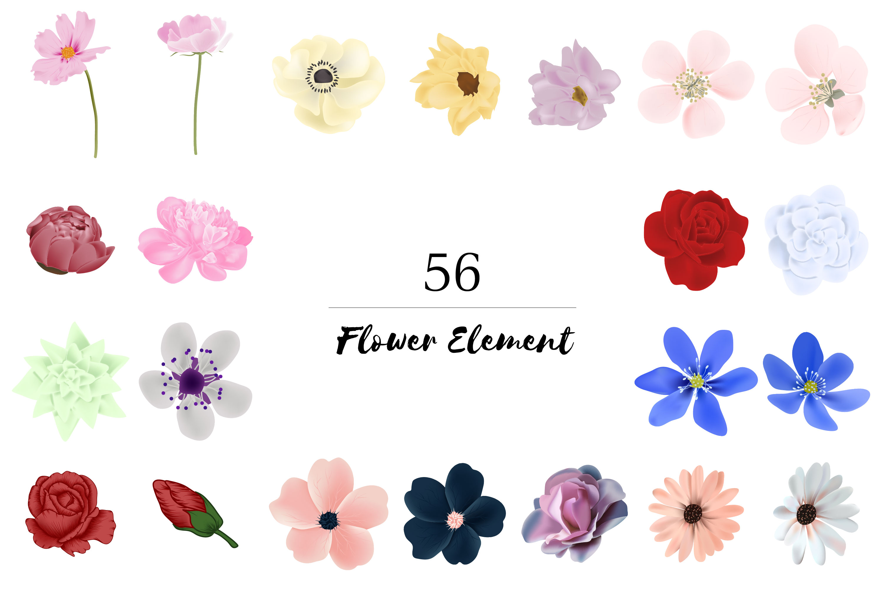150 Flower and Floral Vector Illustration Element example image 4