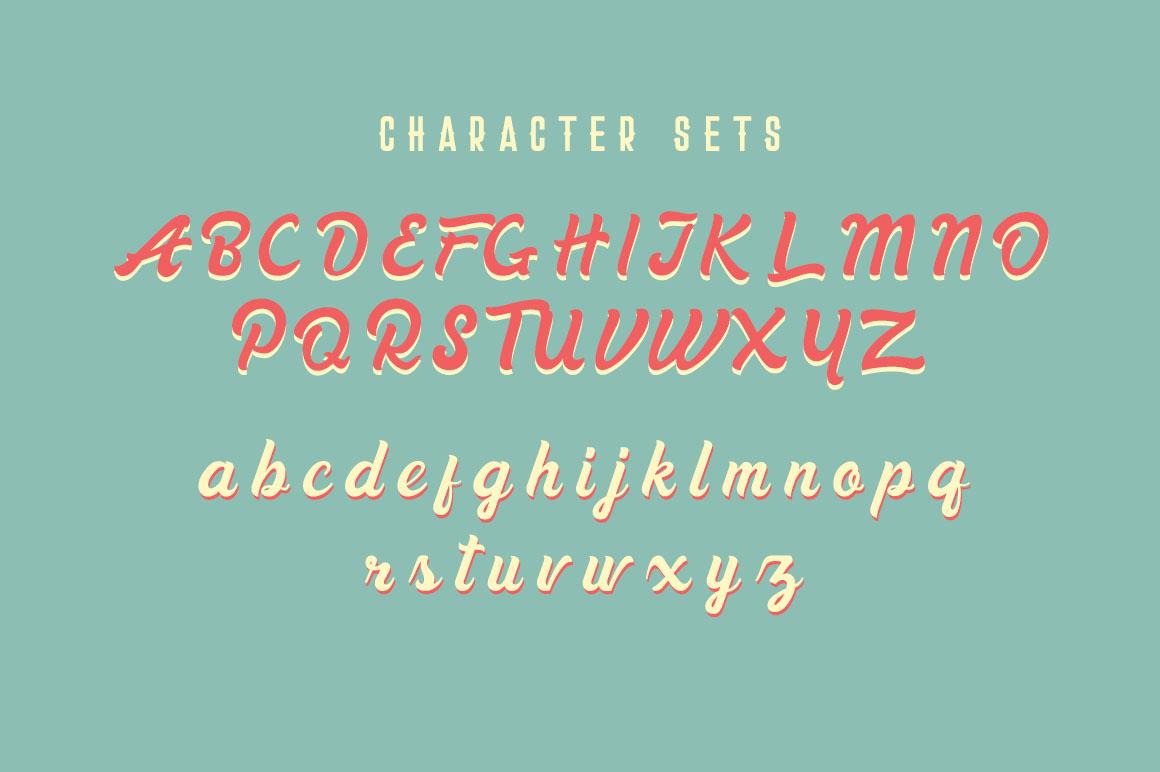 Danilla Font + Premade Logos example image 4