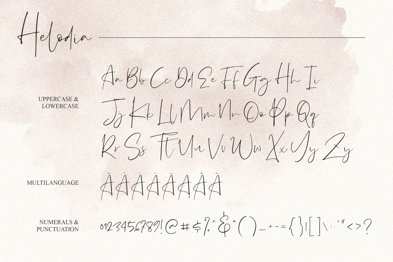 Helodia Font example image 11