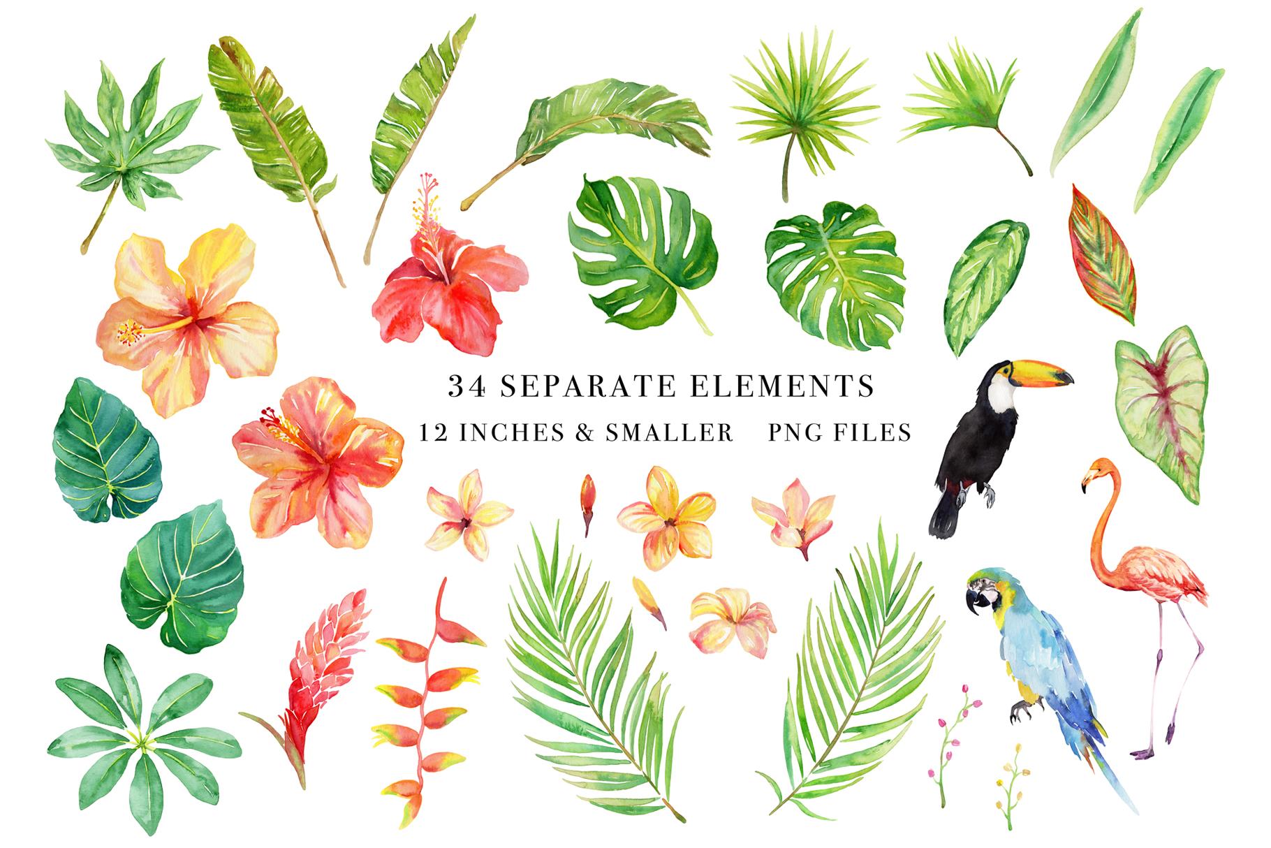 Floral Watercolor Bundle example image 3