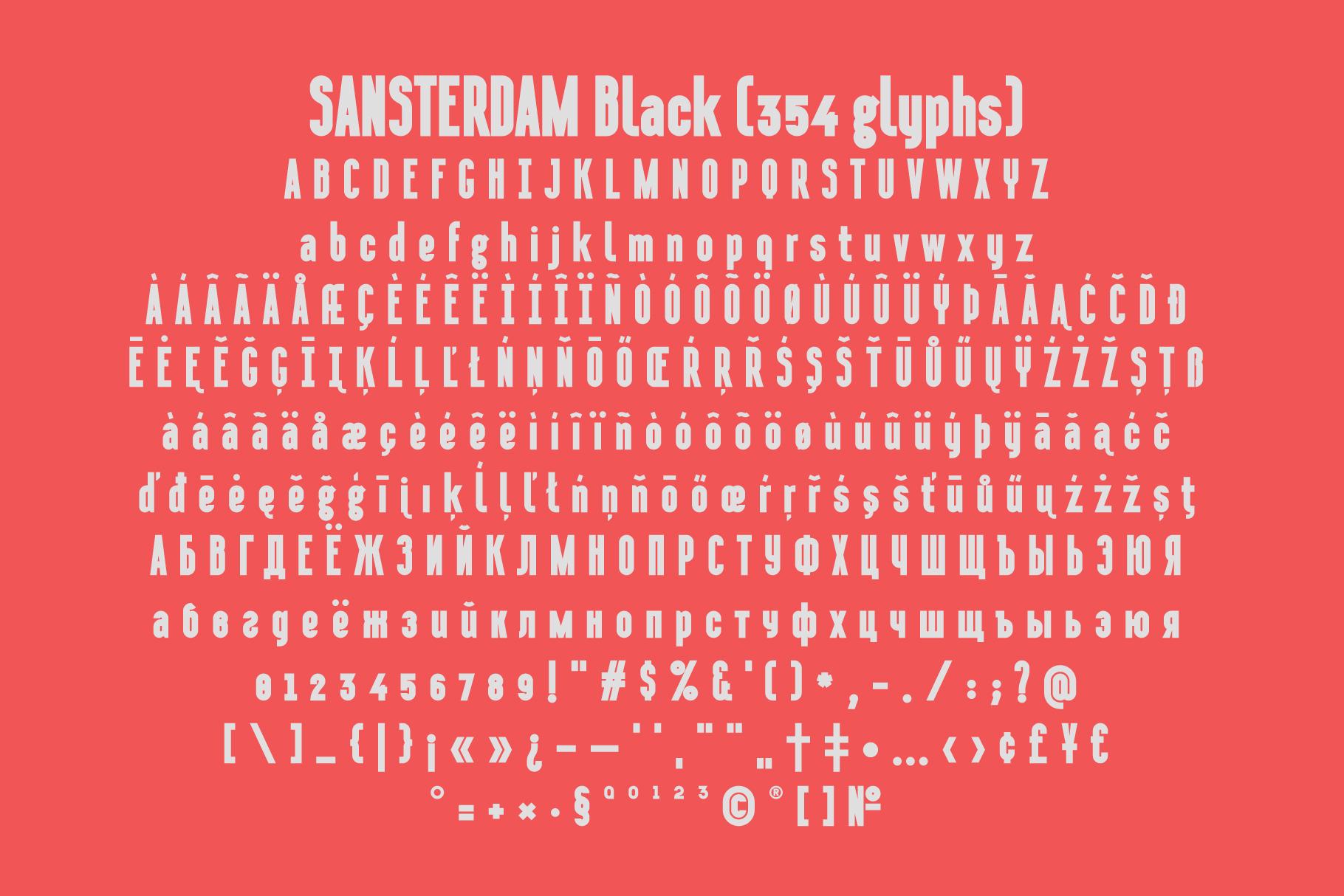 Sansterdam Black & Script example image 5