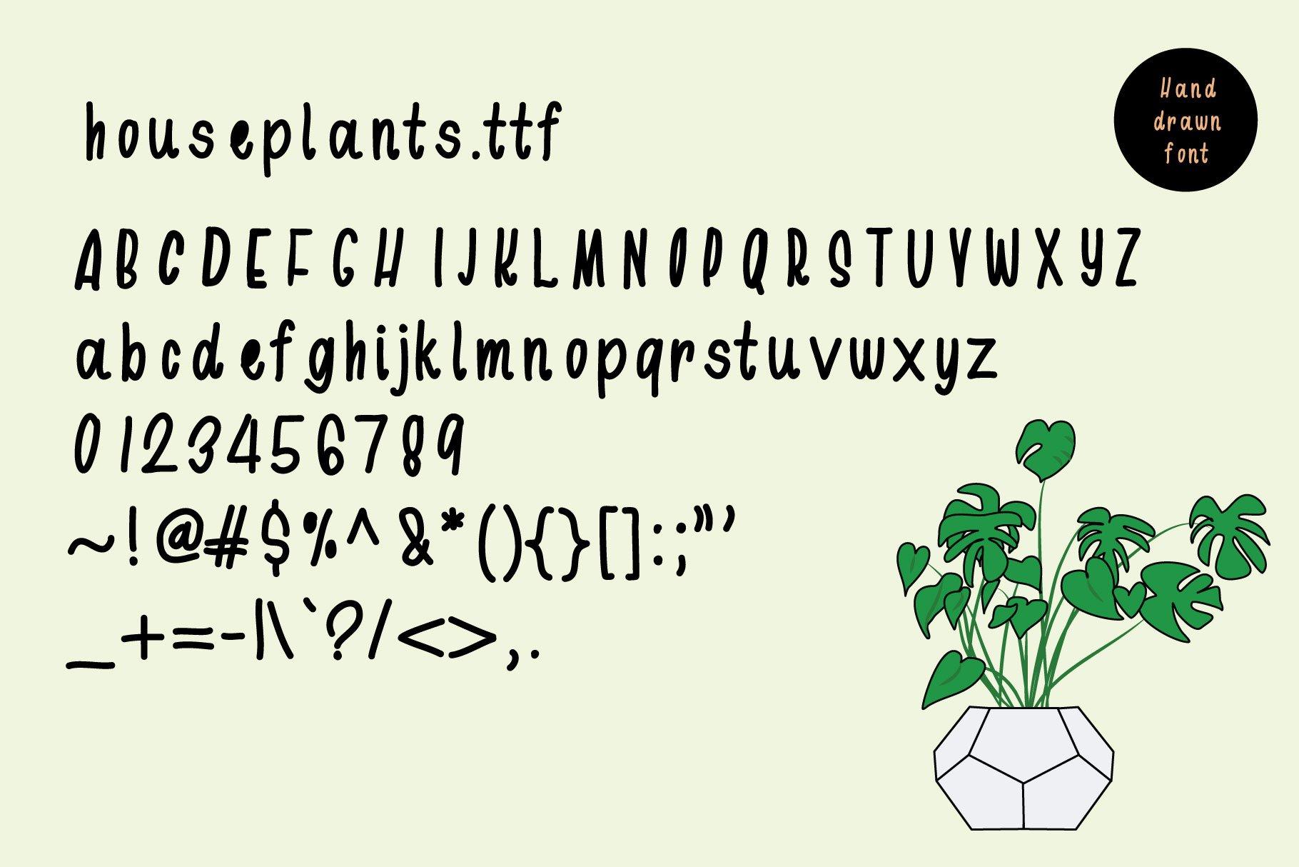 Houseplants Bundle example image 4
