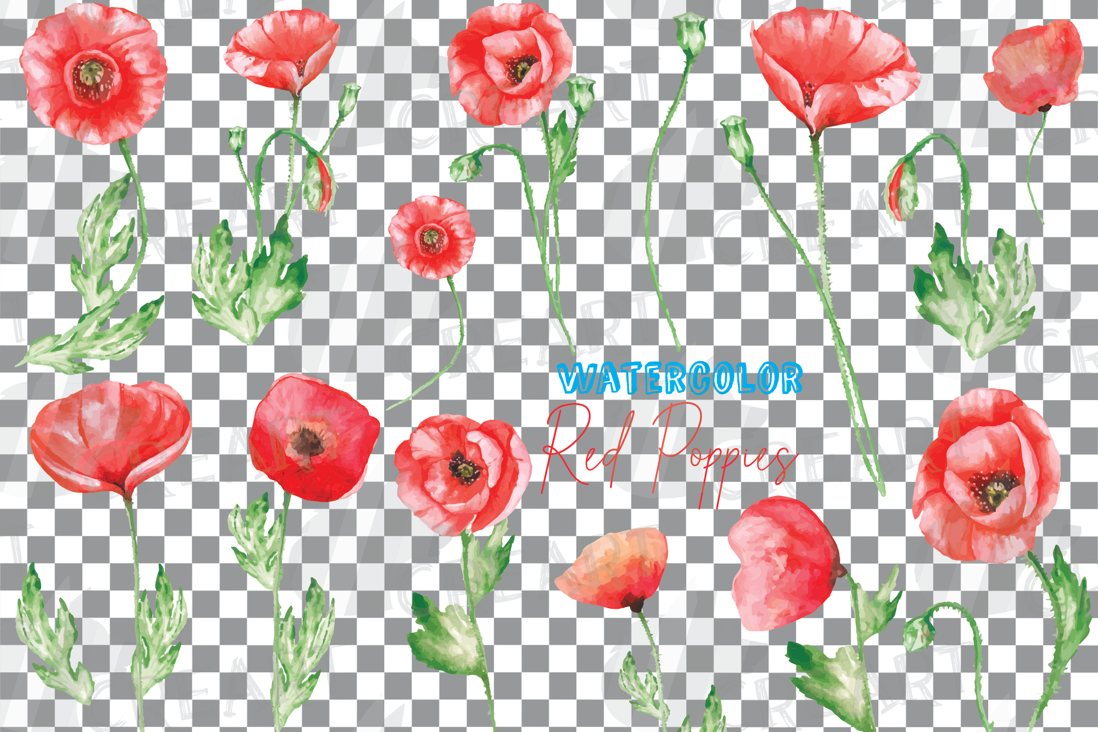 Watercolor red poppy flower and leaf decor clip art. Poppies example image 2