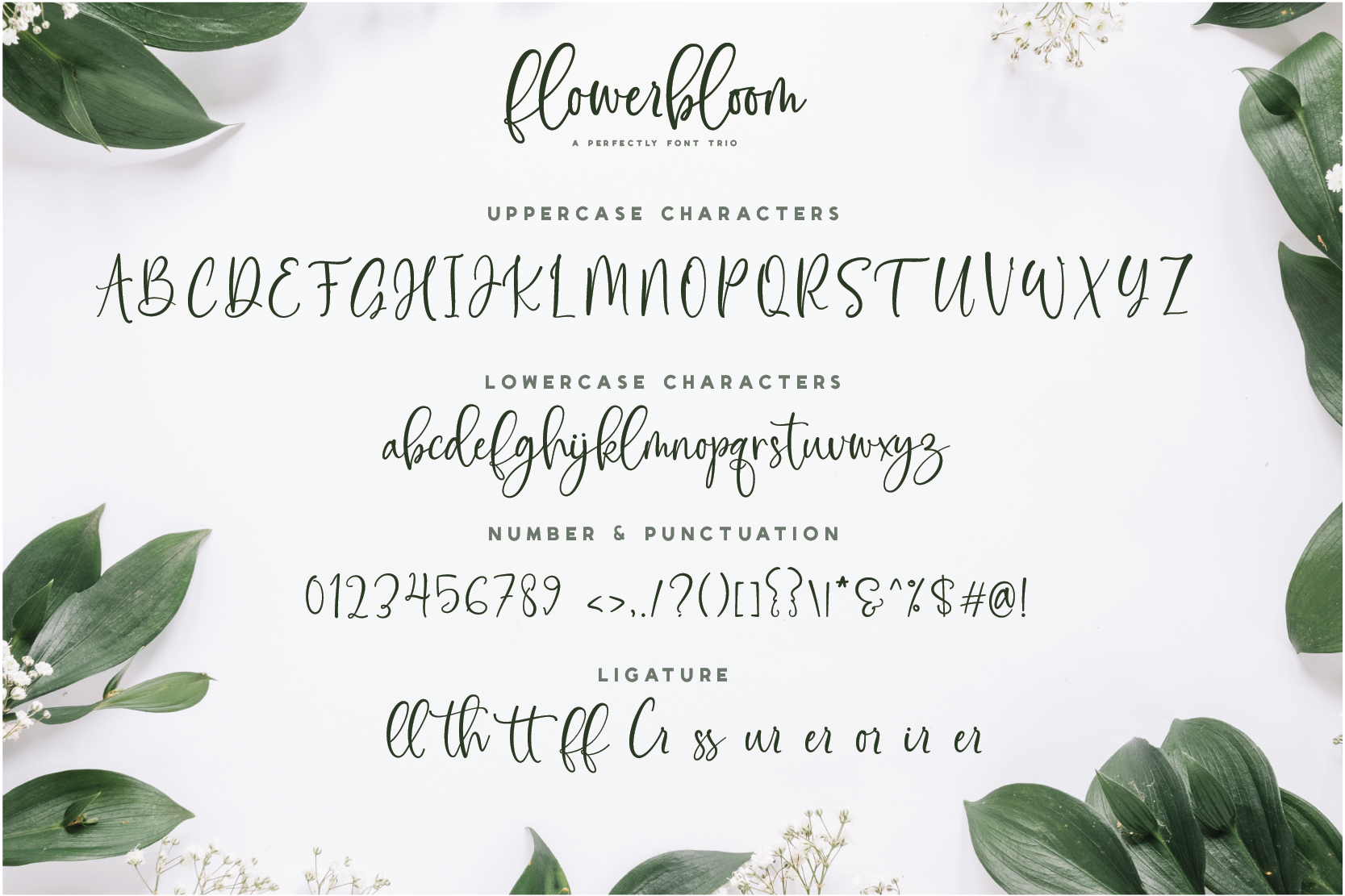 Flowerbloom Font Trio example image 12