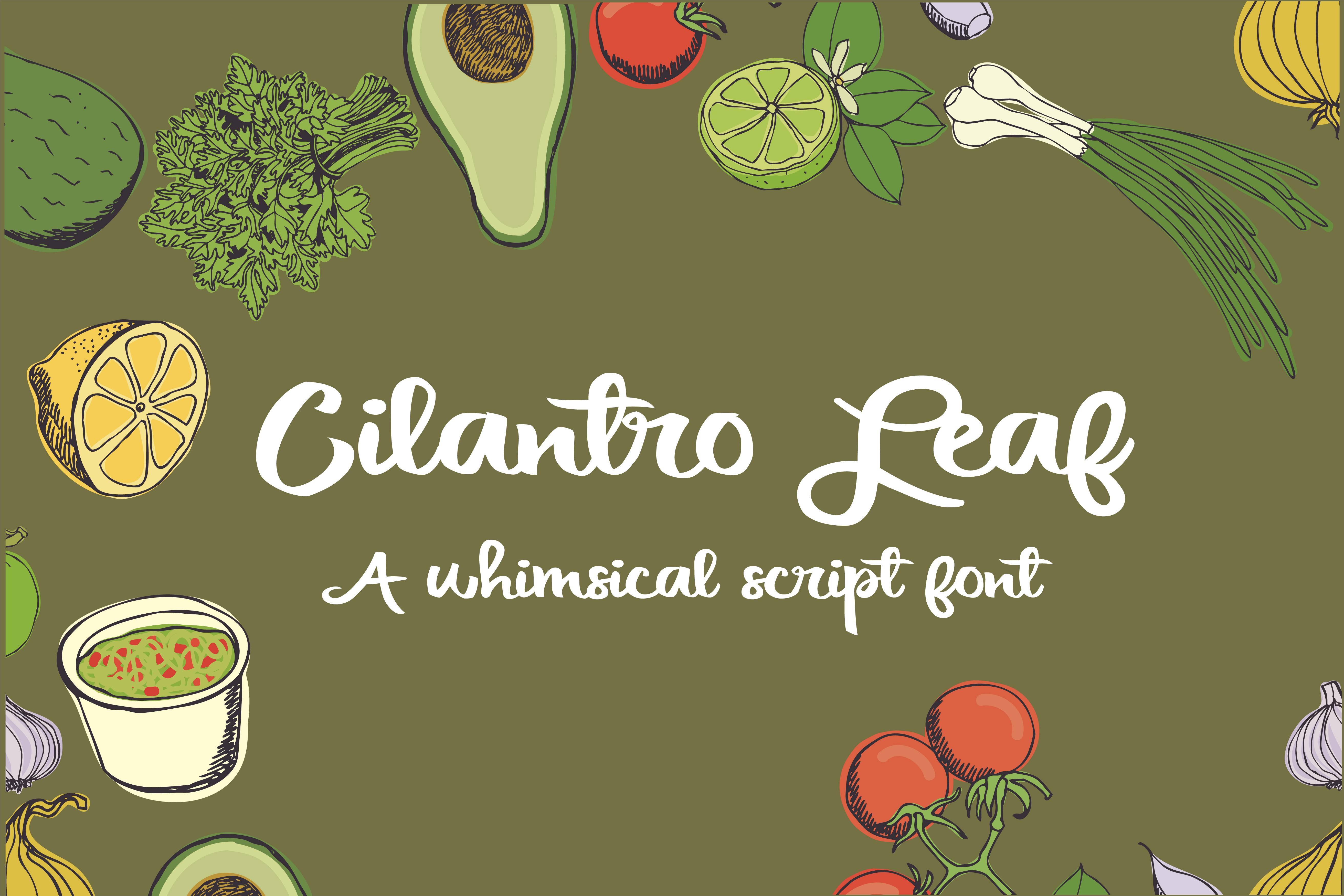 PN Cilantro Leaf example image 1