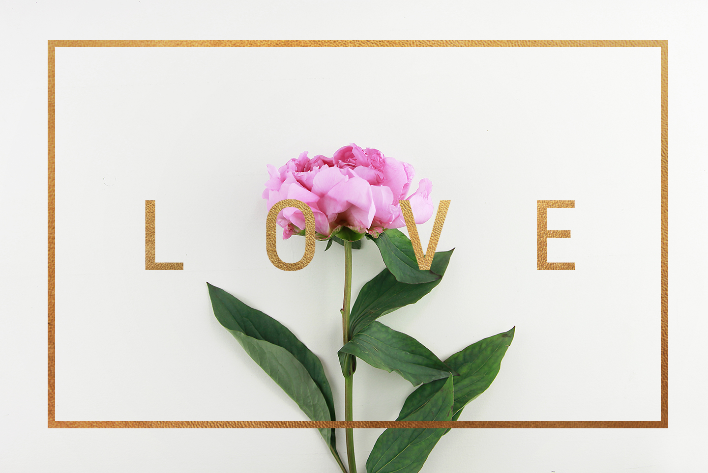 20 Styled stock pink peonies, floral images & mockups example image 4