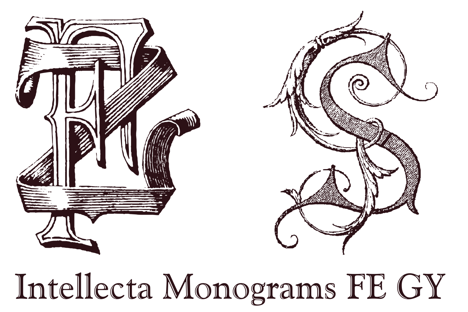 Intellecta Monograms FE GY example image 11