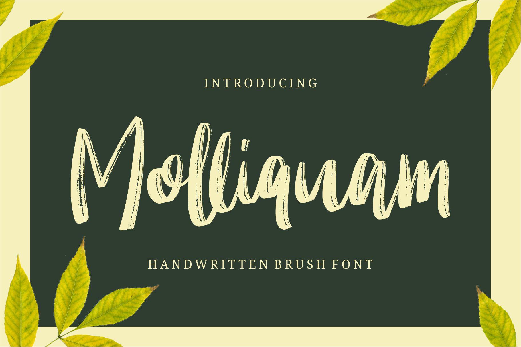 Molliquam example image 1