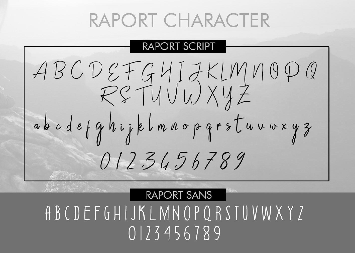 Raport Script example image 7
