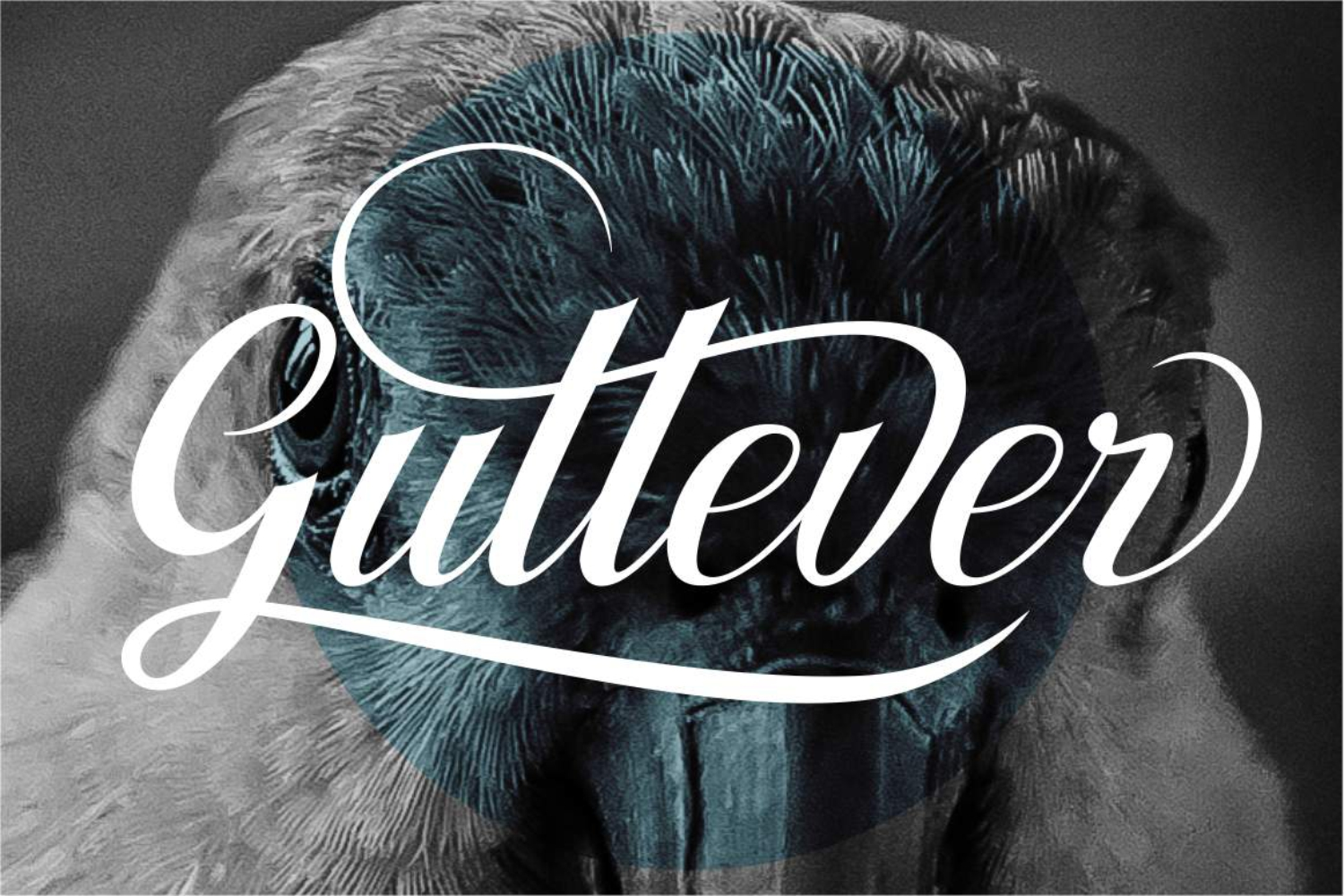 Gullever Font example image 1