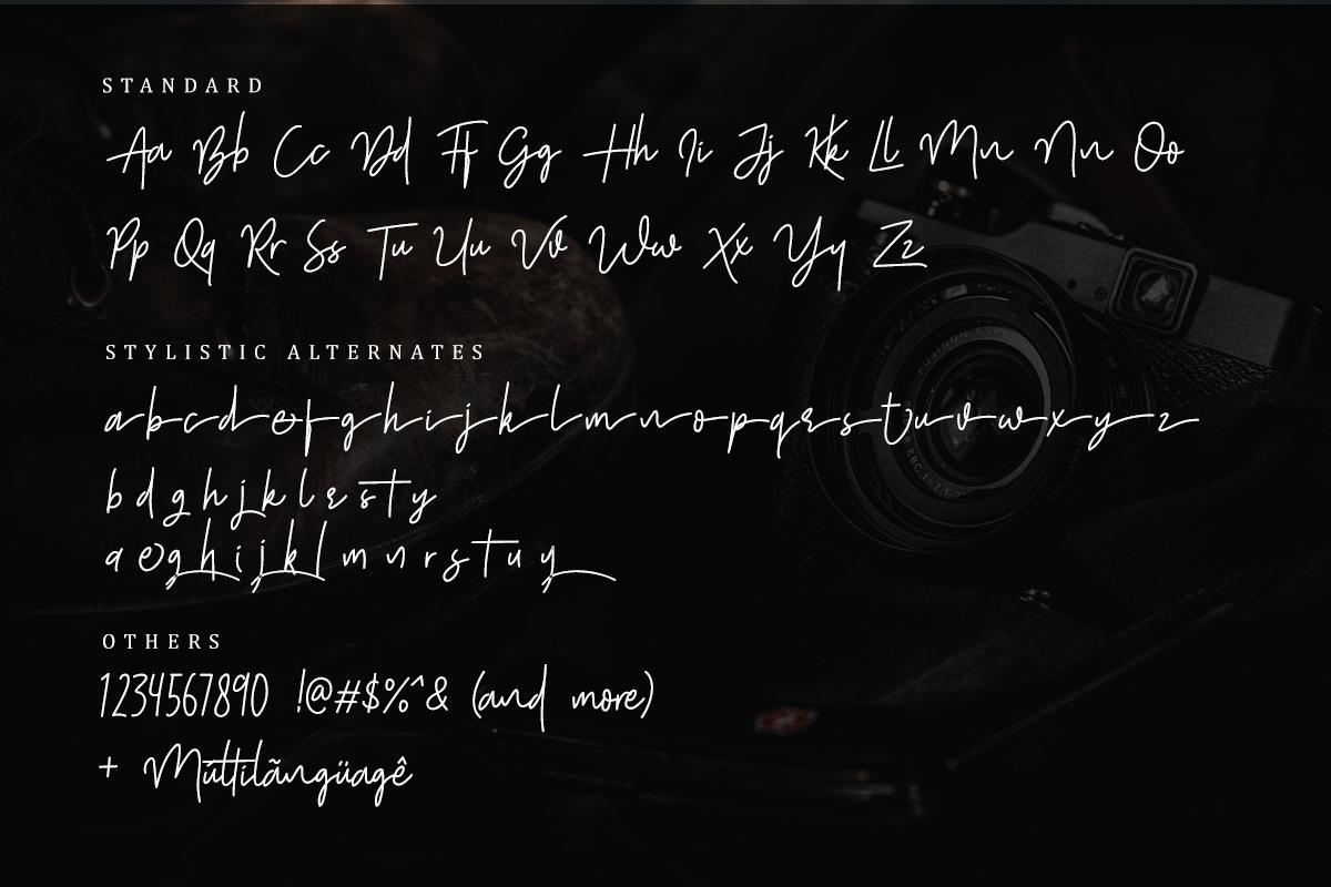 Shutter Stone - Signature Script example image 6