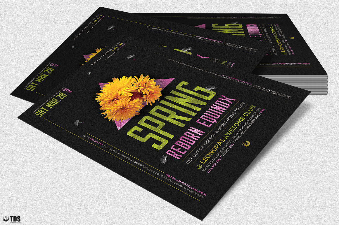 Spring Equinox Flyer Template V6 example image 4