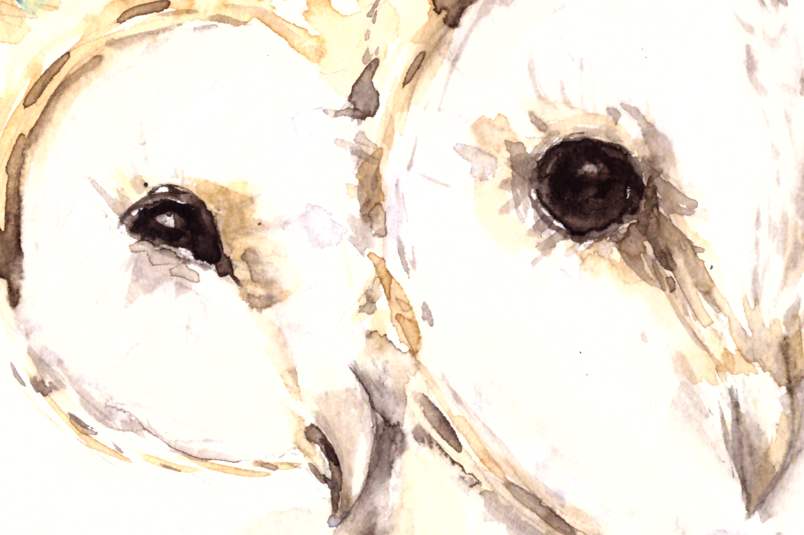 Love and Owls - Watercolor Illustration/Print example image 2