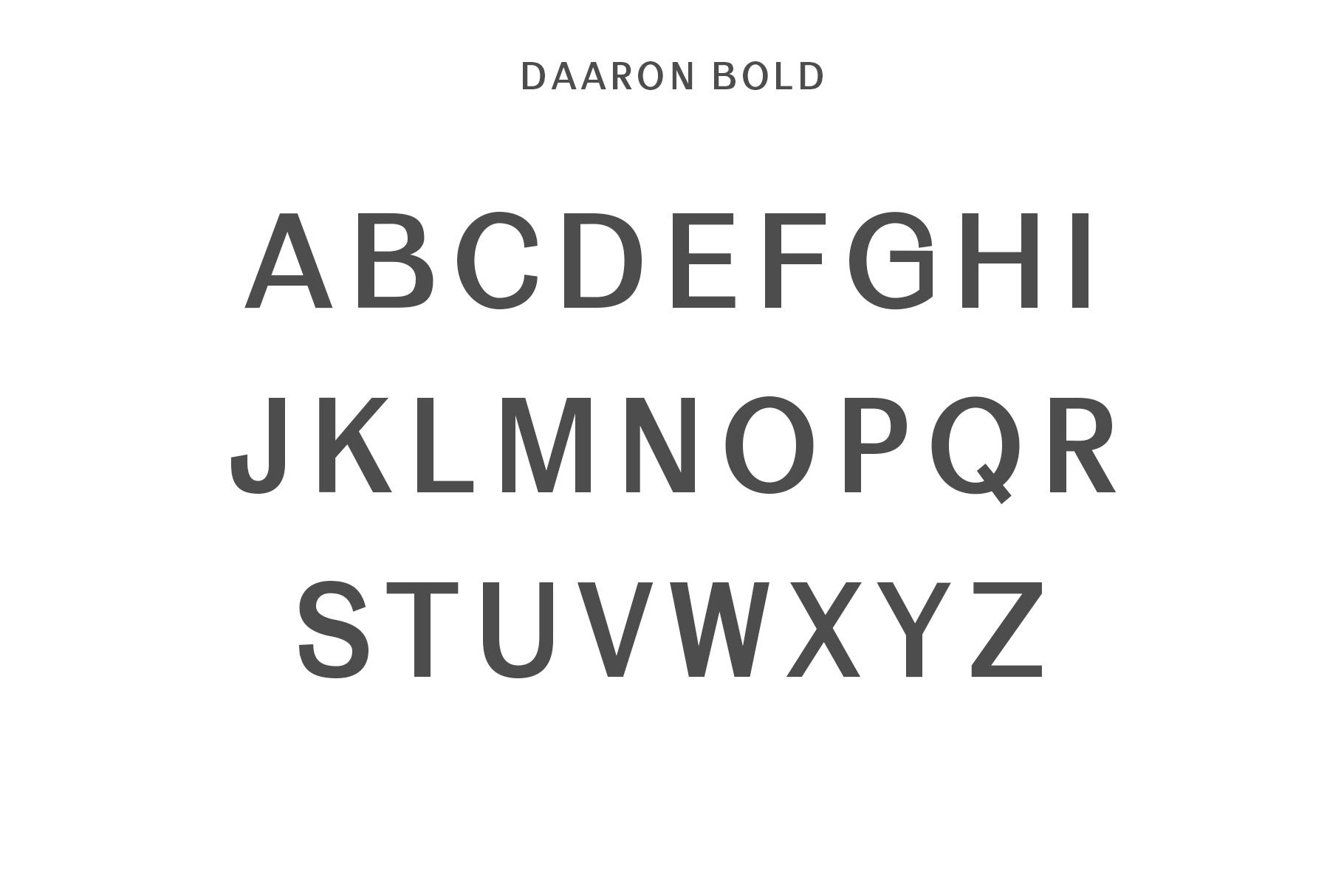 Daaron Sans Serif Font Family example image 4