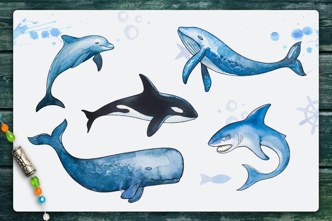 Nautical illustrations example image 4