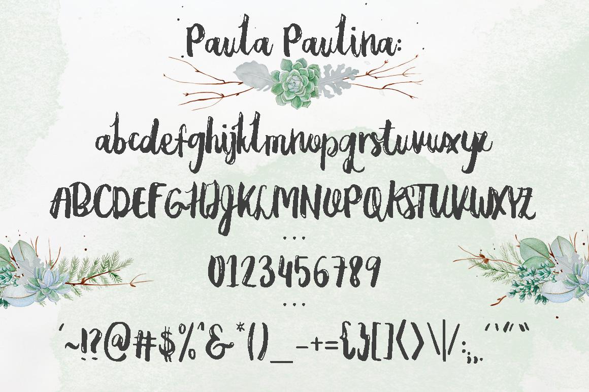 Paula Paulina example image 6