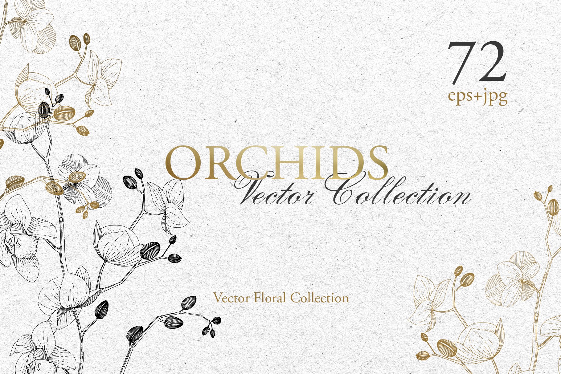 Branch of Orchids vector watercolor example image 1