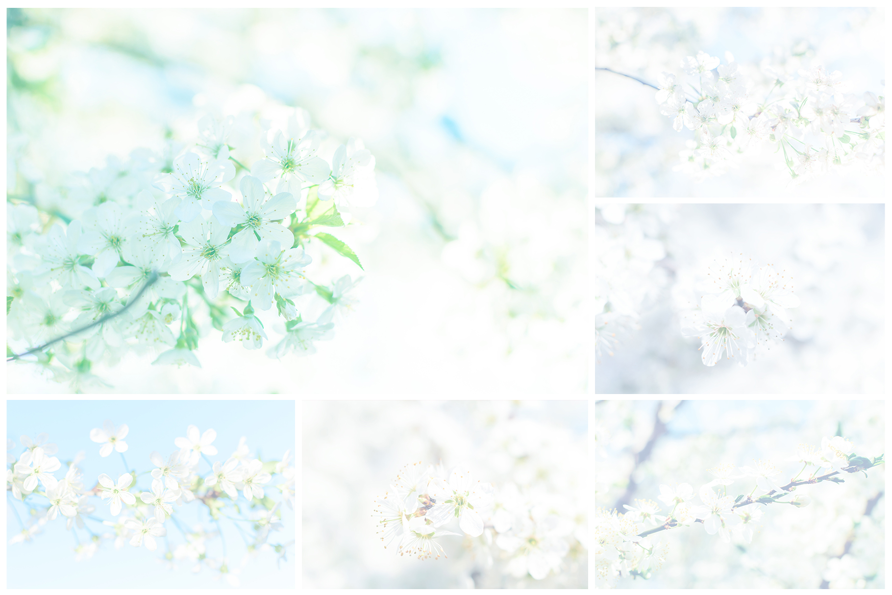 Spring Flowers and Paintings Bundle example image 22