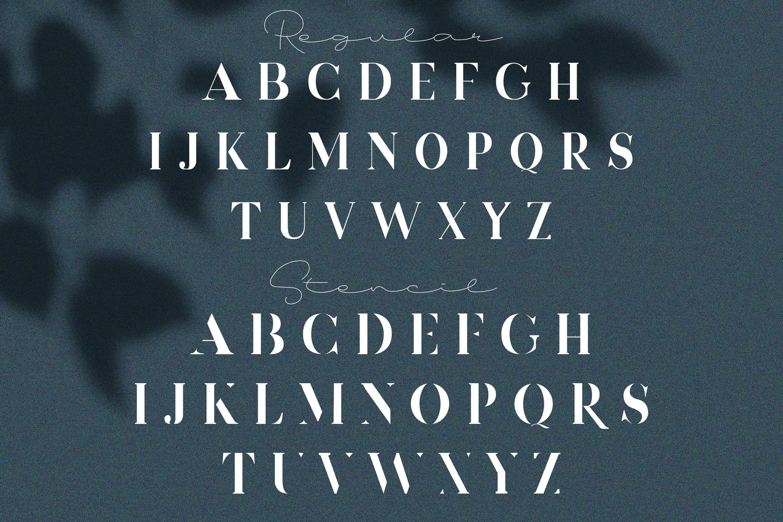 Devitos Modern & Elegant Serif Font example image 10