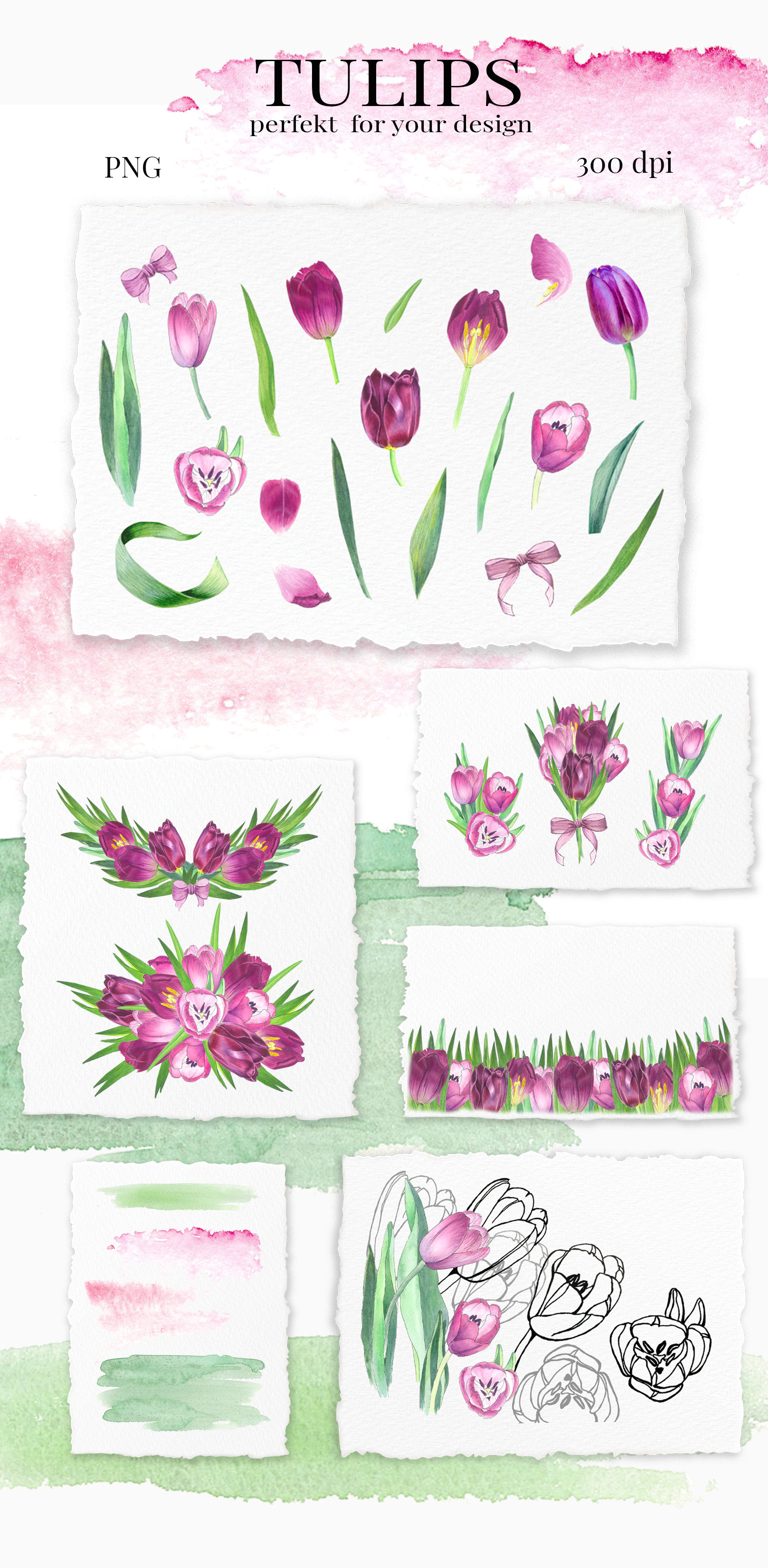 TULIPS. SPRING BOUQUET. Hand painteg watercolor clip art. example image 5