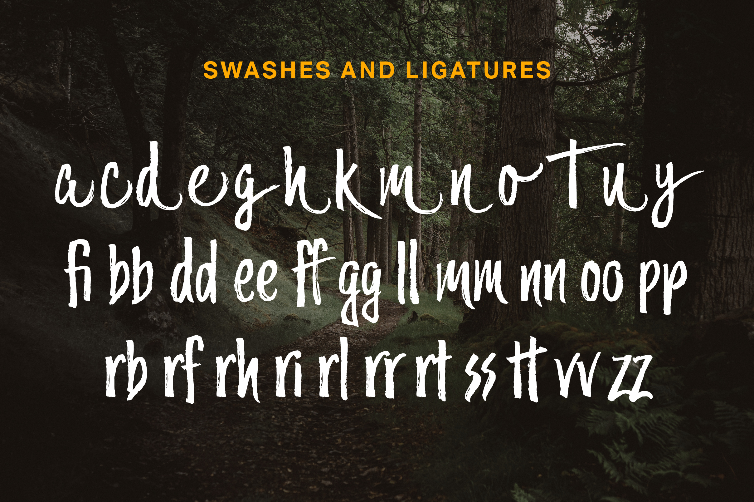 Trailmade Font Family example image 3