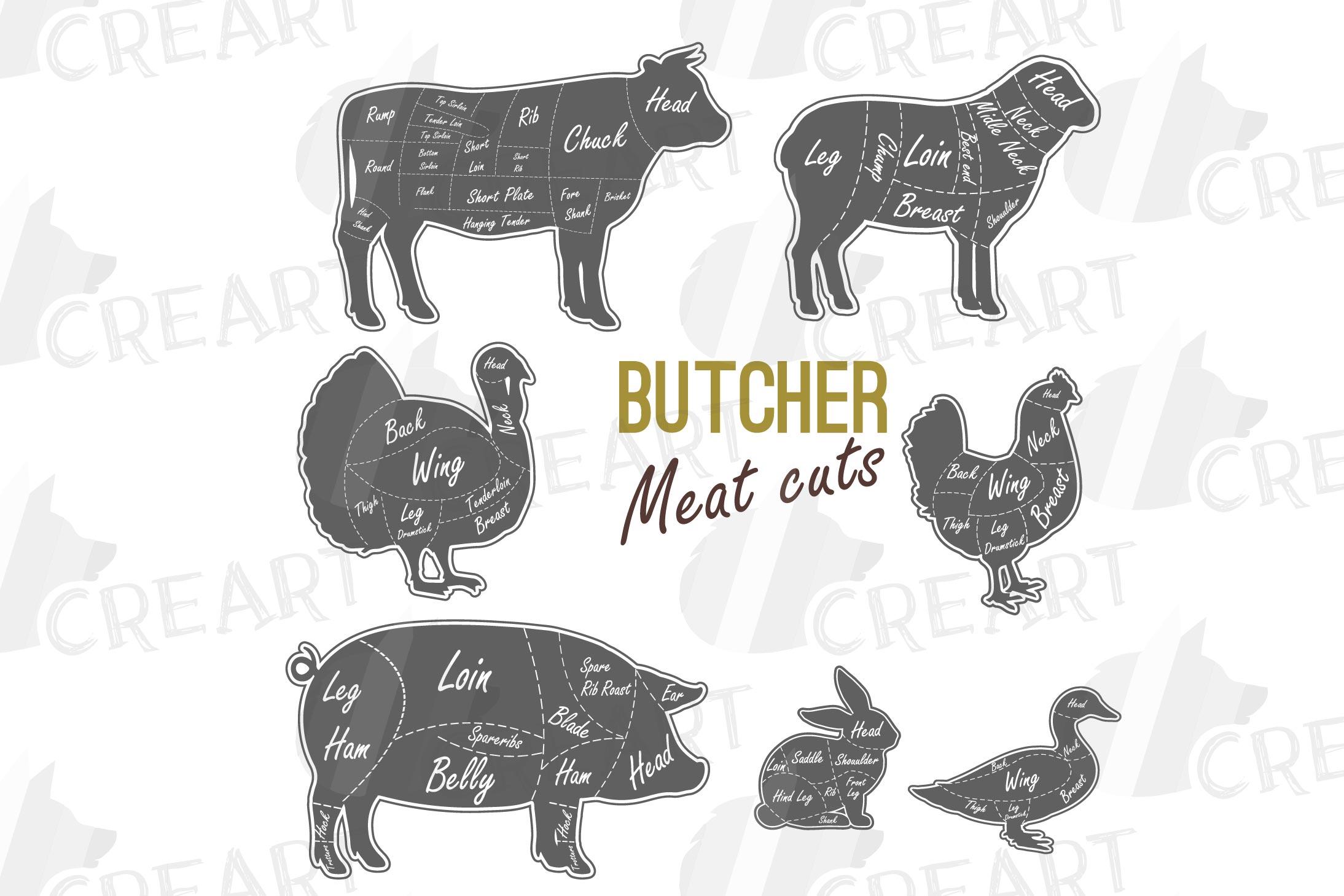 butcher diagram clipart  cuts of meat lamb  beef  pork  chic
