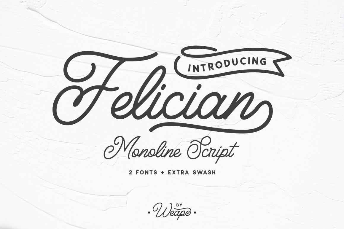 Felician Monoline Script example image 1