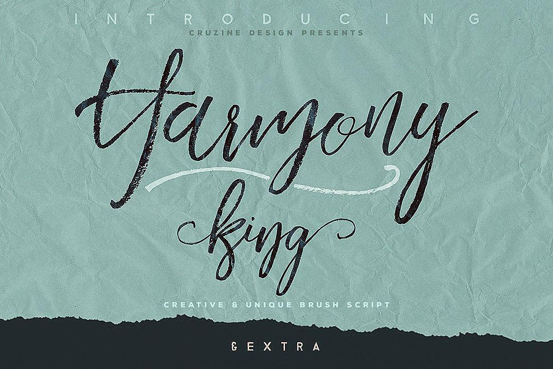 Harmony King - Brush Font example image 1