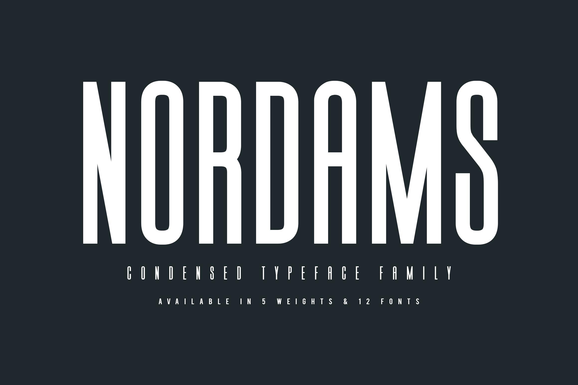 NORDAMS - Sans Serif example image 1