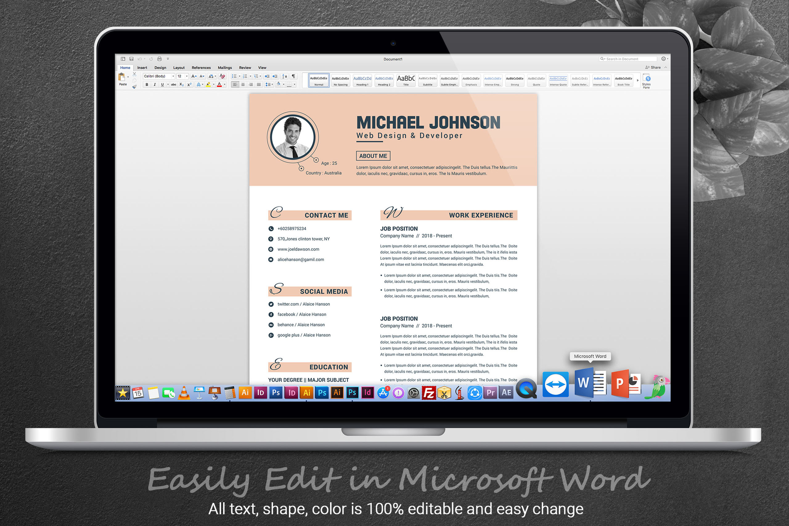 Resume Template for Word & Pages example image 5