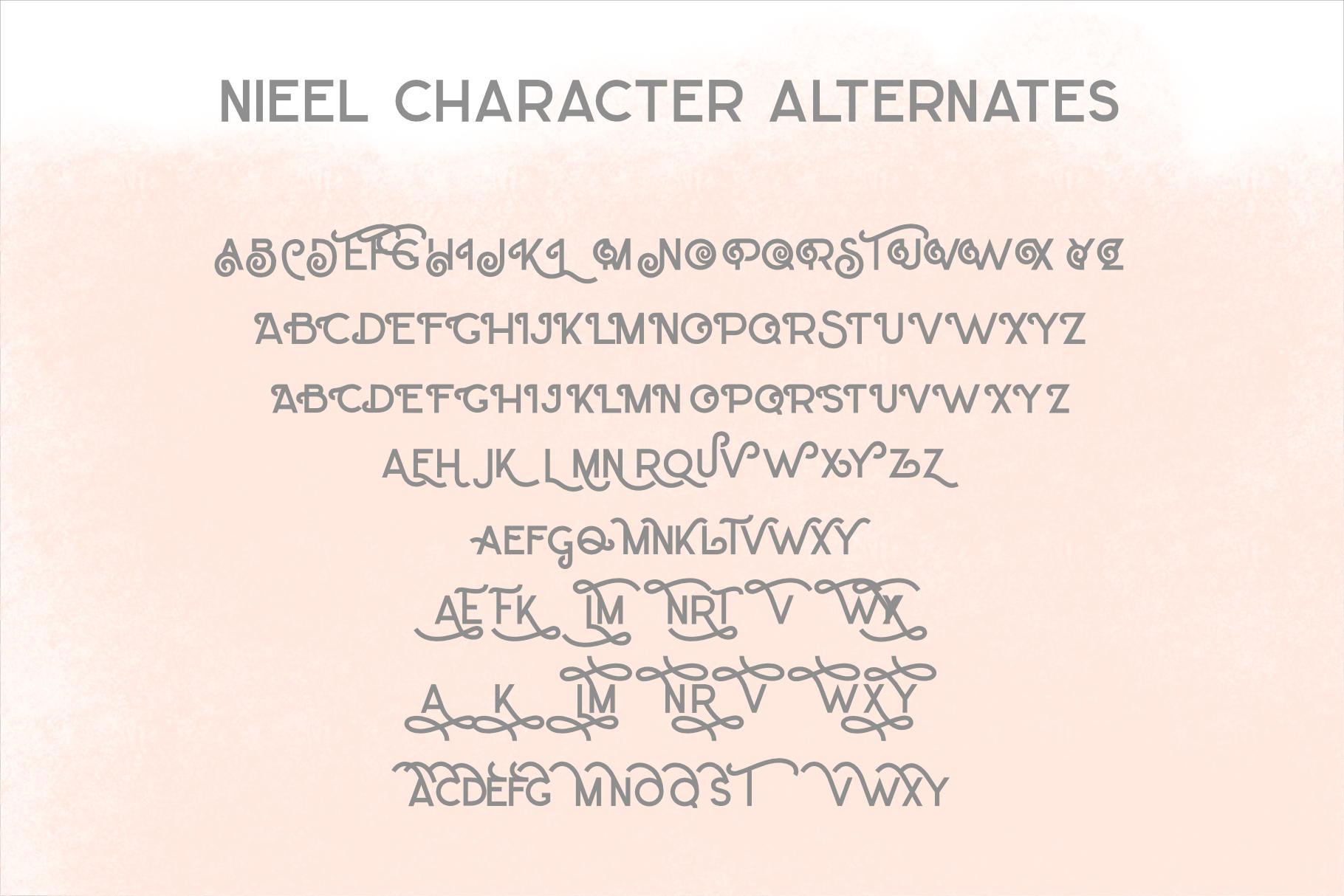 NIEEL example image 11