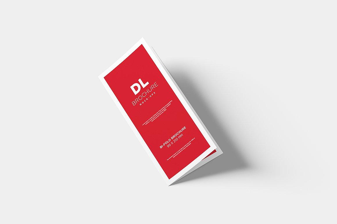 DL Bi-fold Brochure Mock-Up example image 5