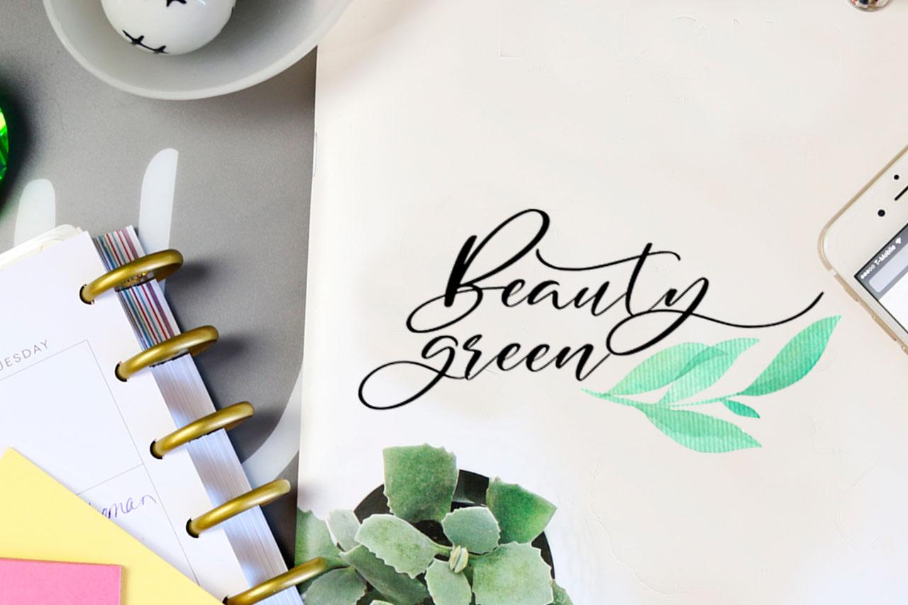 Blakeley Script Font & Watercolor Logos example image 3