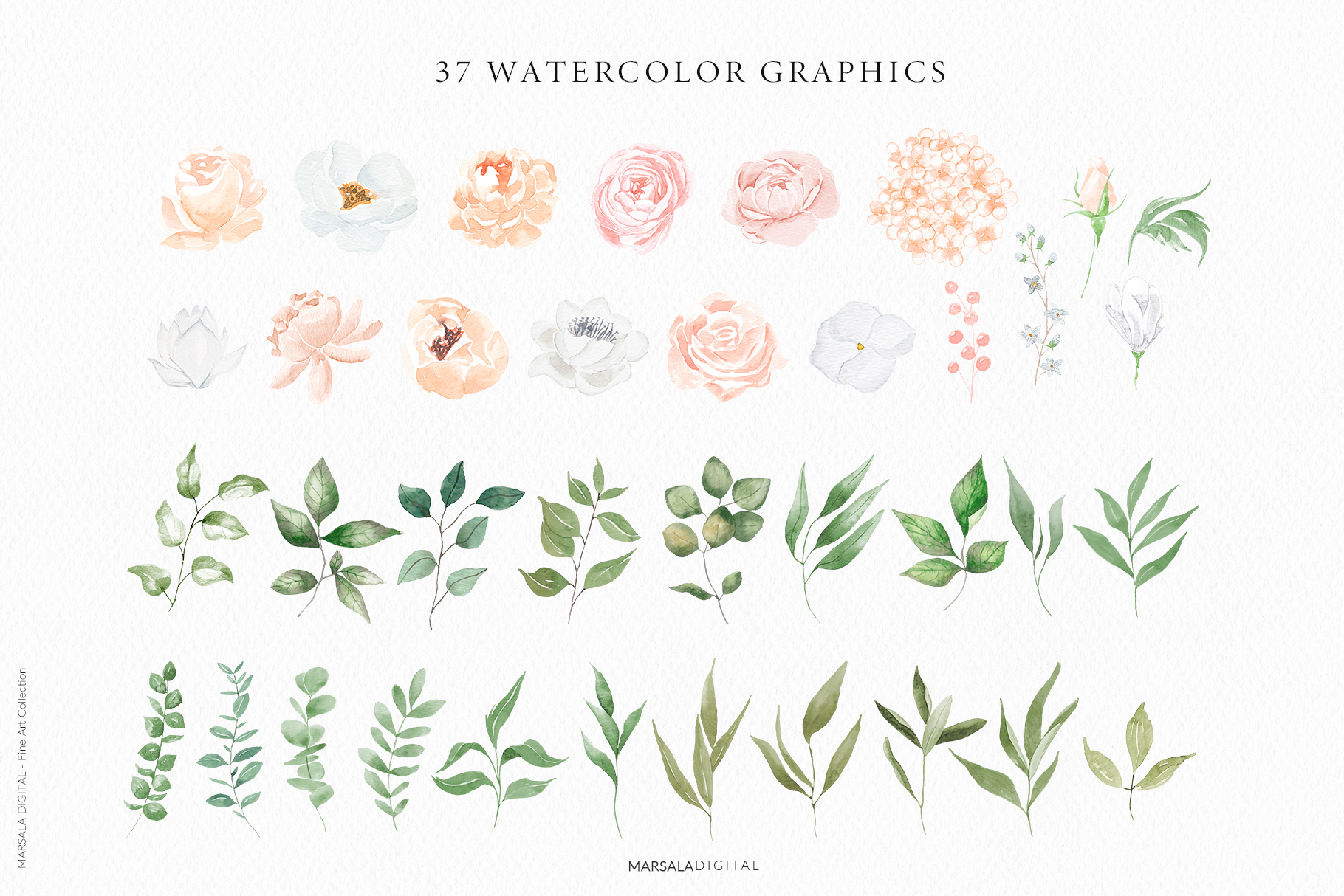 Watercolor Flowers Watercolor Florals Peach & White example image 25
