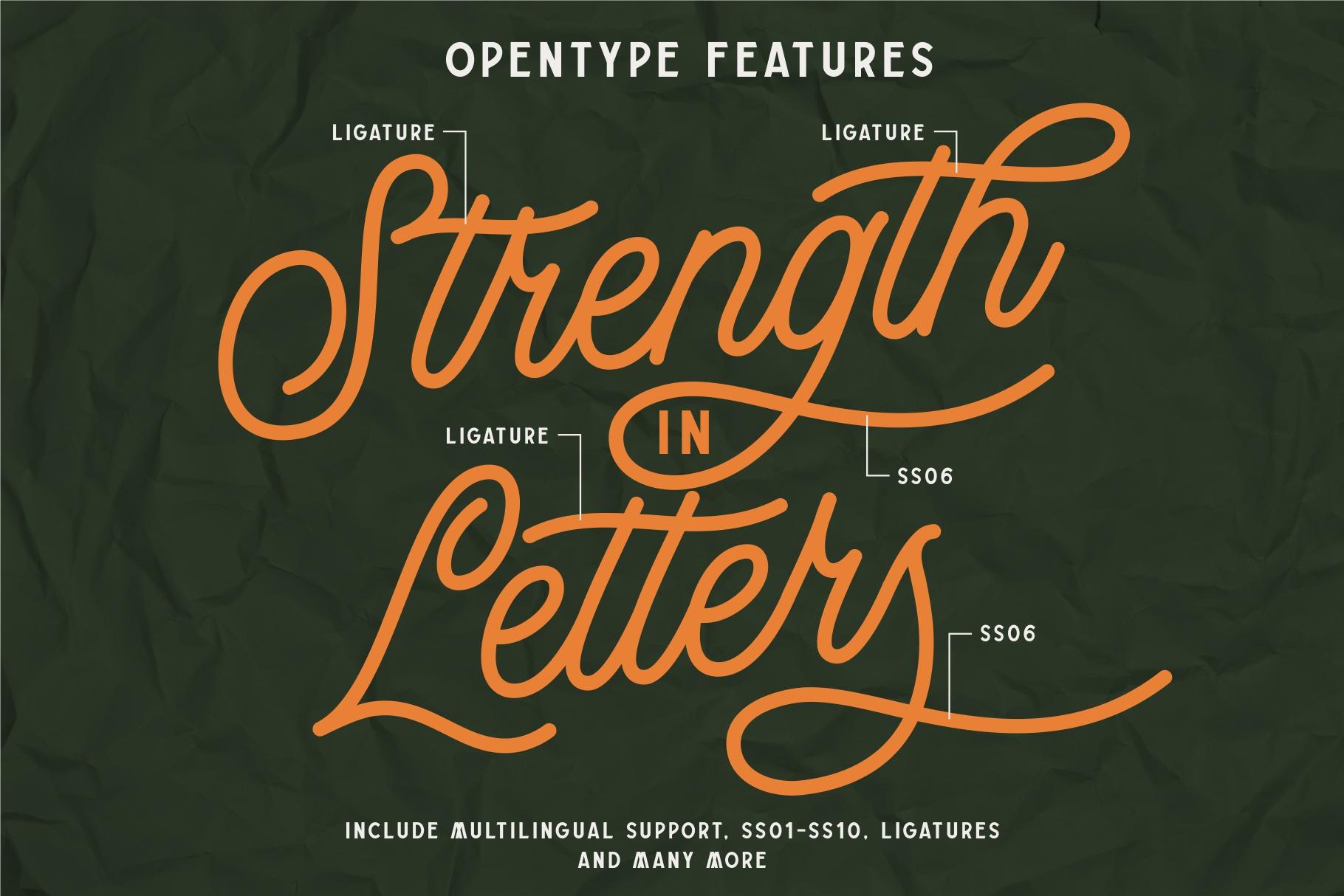 Buryland Typeface Collection example image 11