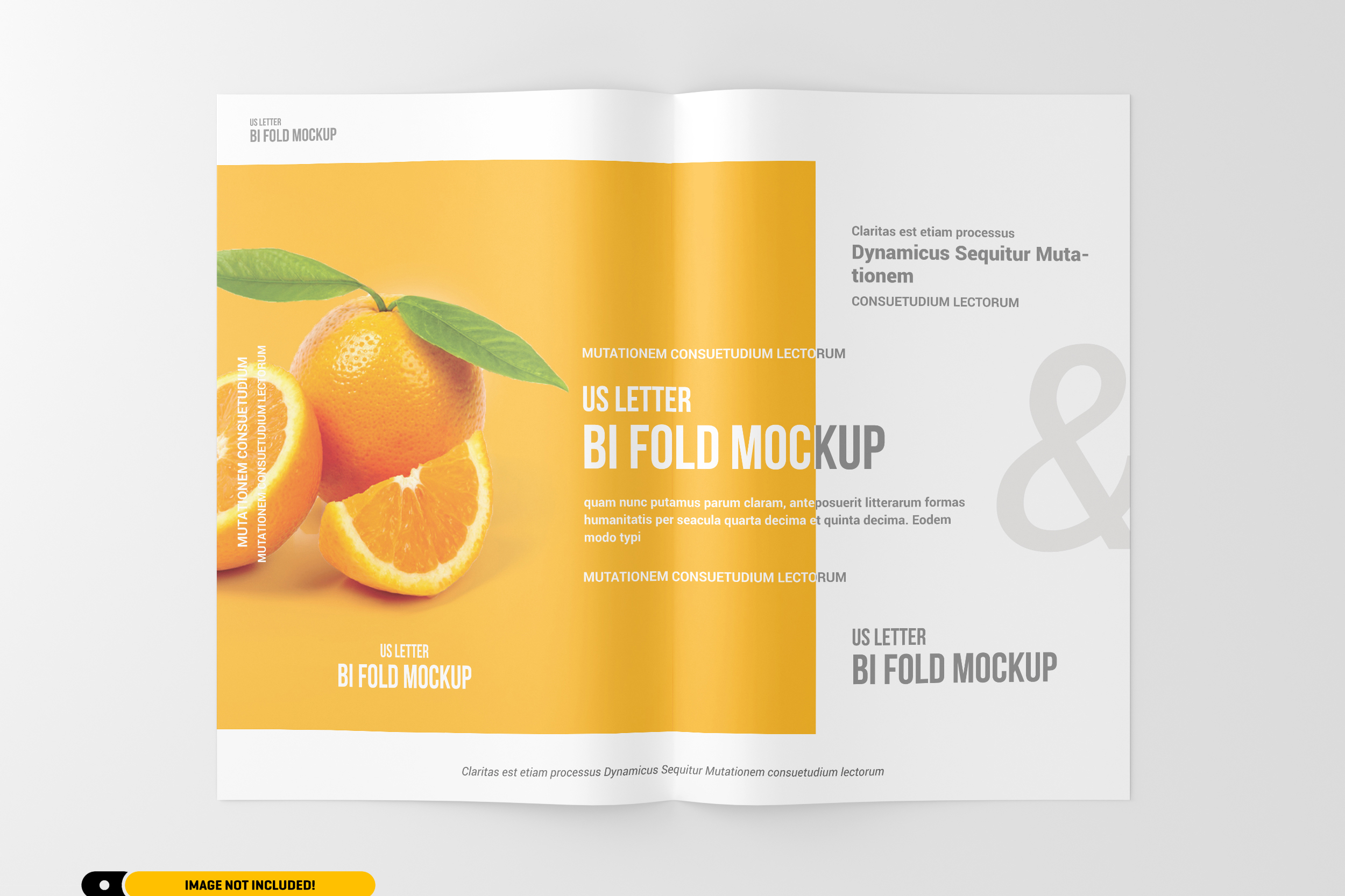 US Letter Bifold Brochure Mockup example image 8