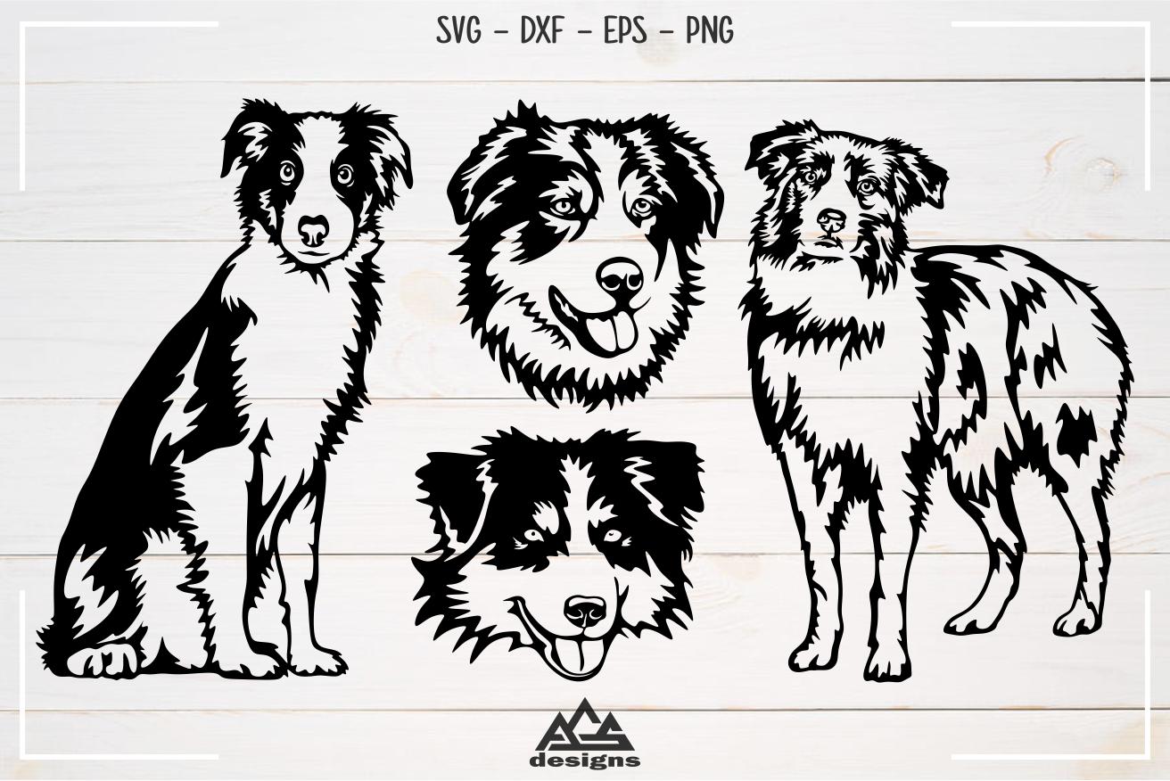 Dog Australian Shepherd Svg Design example image 1