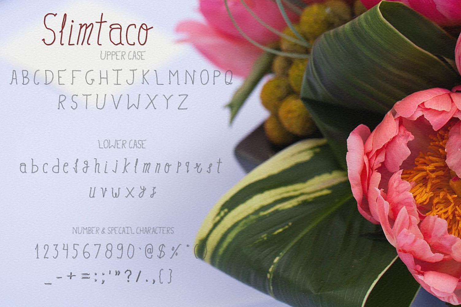 Slimtaco Font example image 2