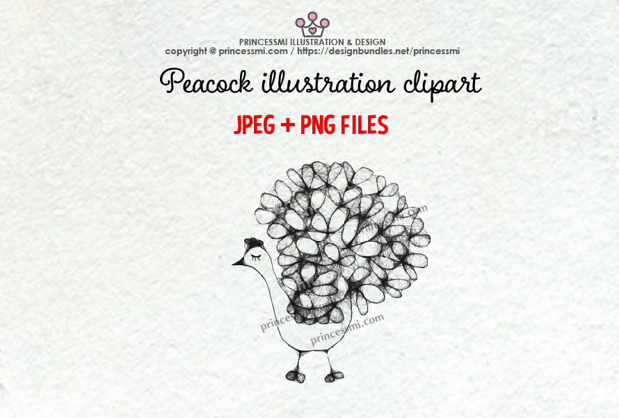 PEACOCK illustration clipart example image 1