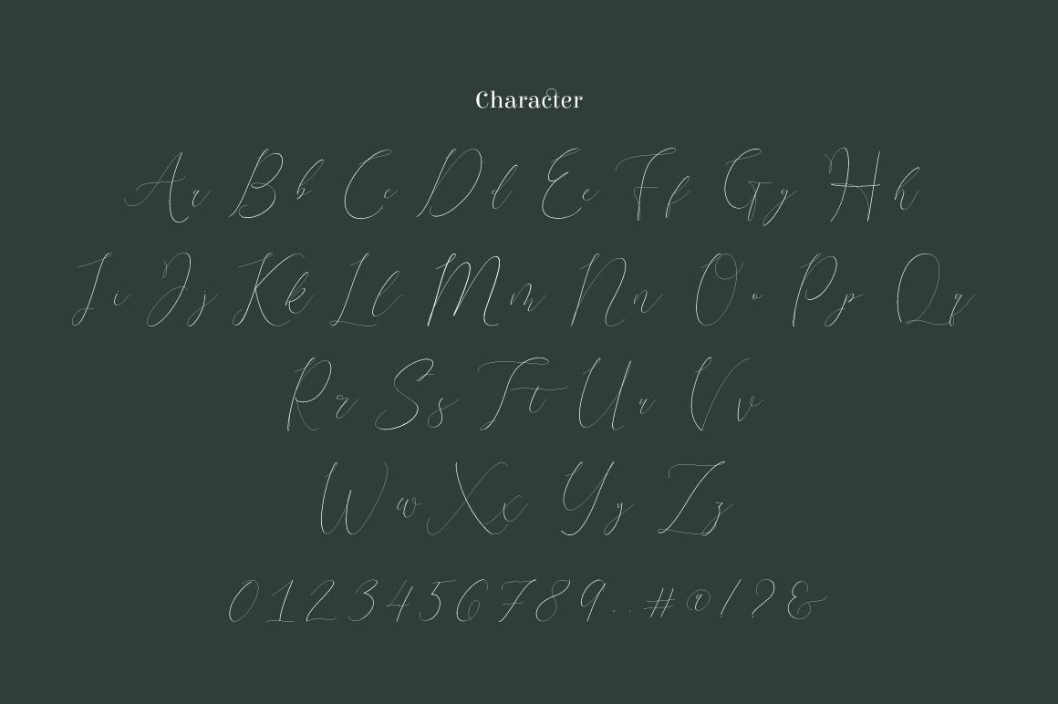 Terranika Typeface example image 3