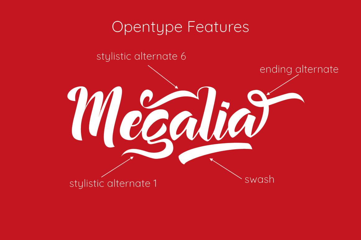 Megalia - Script Font example image 2