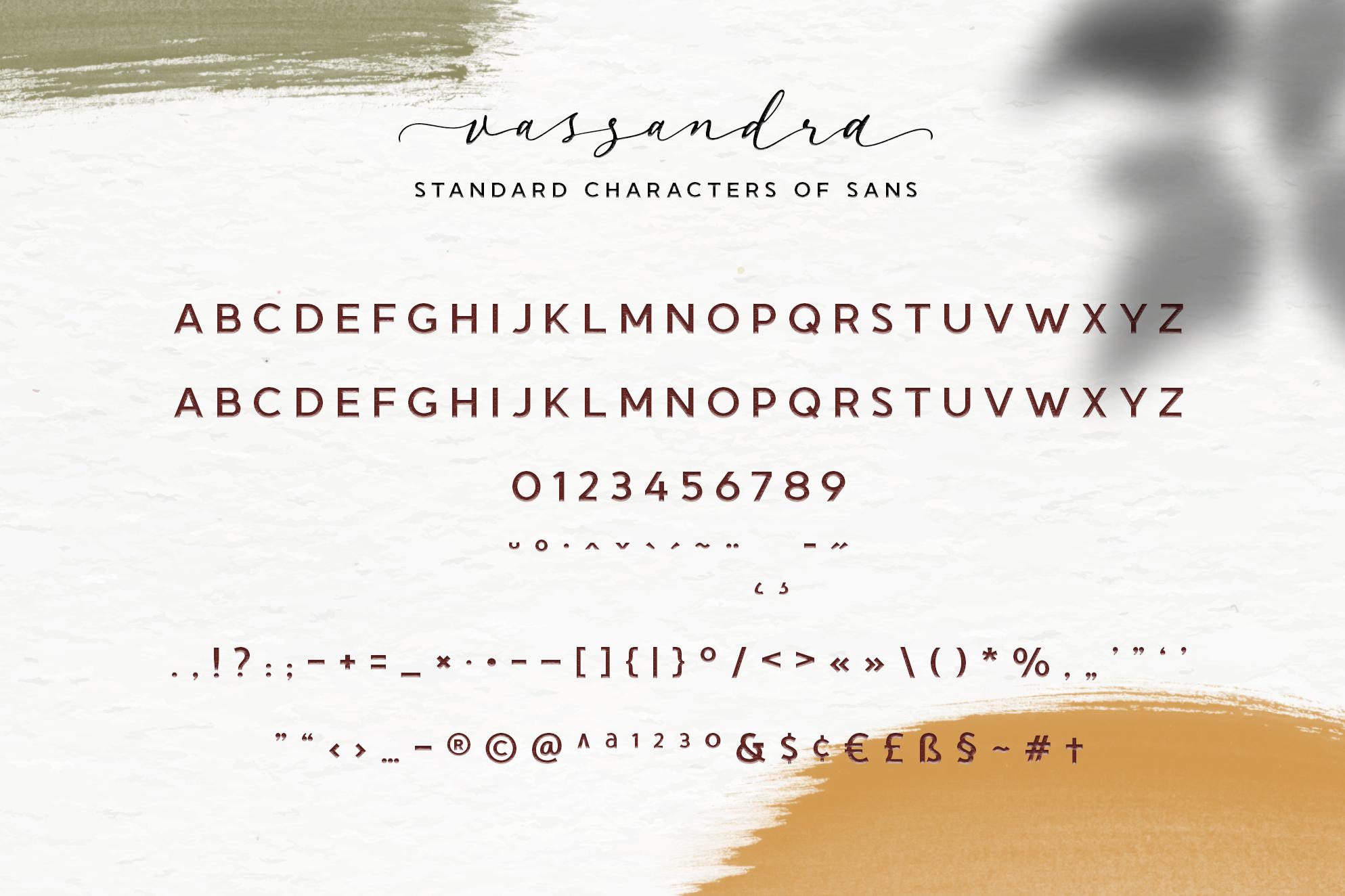 Vassandra Modern Script example image 6