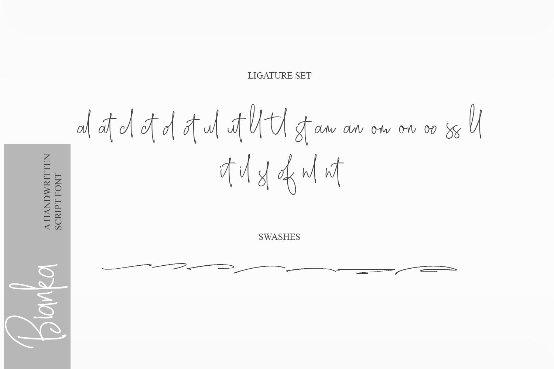 Bianka Script Font example image 6