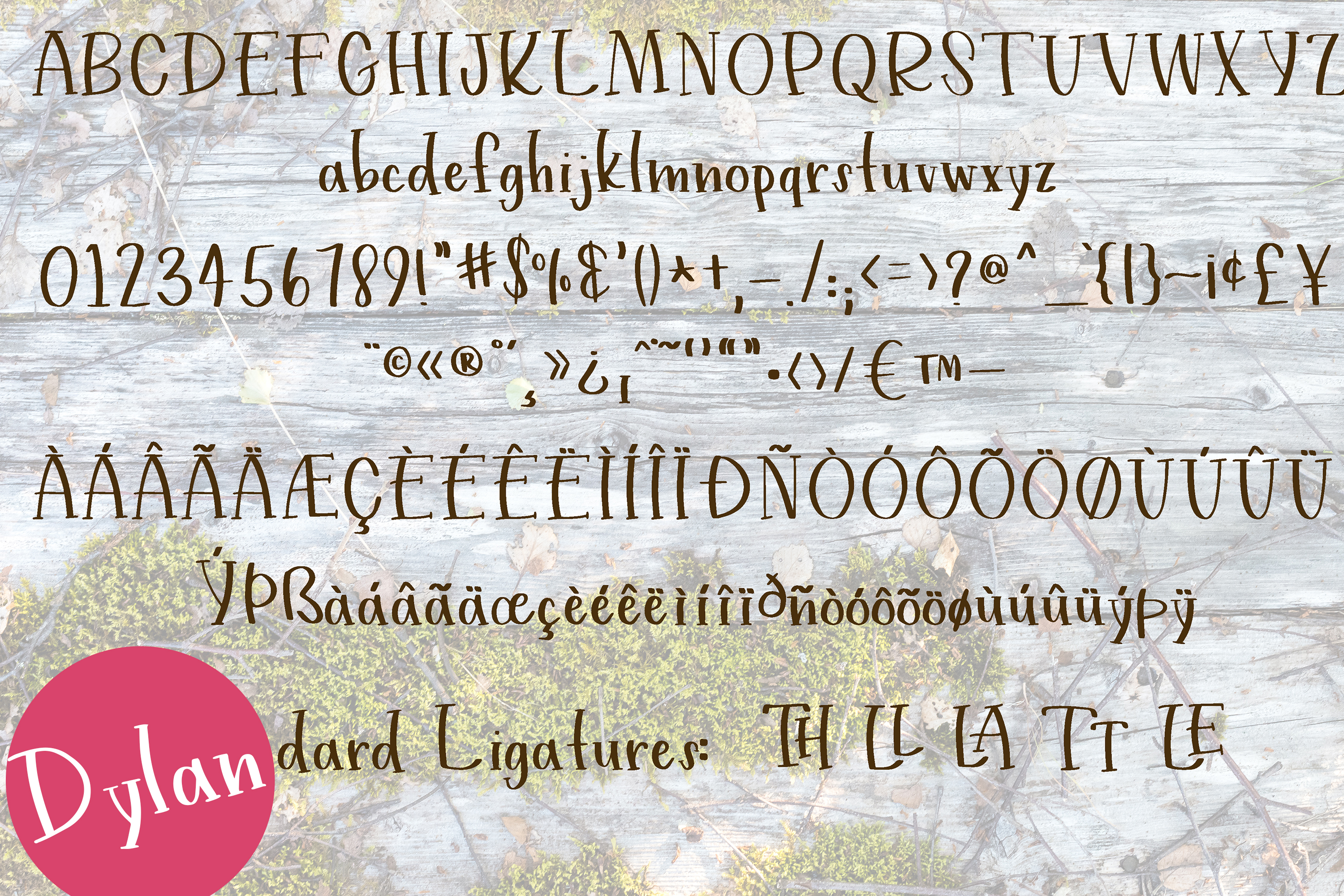 Handwritten Print Fonts bundle example image 3