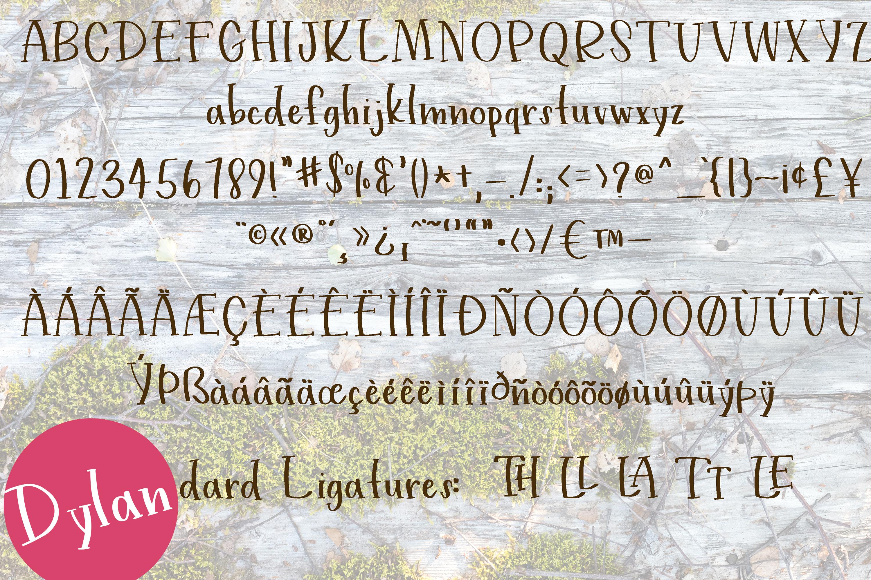 Handwritten Print Fonts bundle example image 3