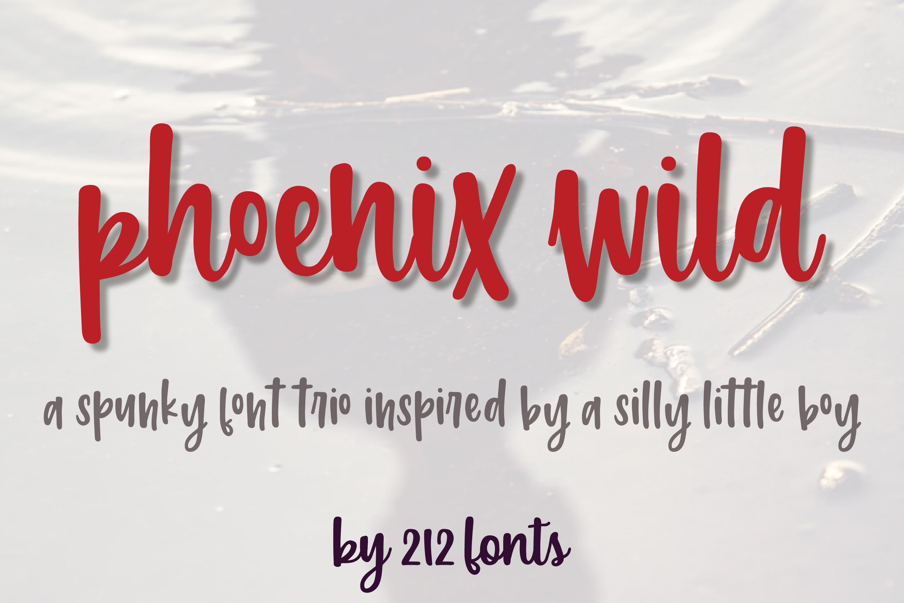 212 Phoenix Wild Font Trio of 2 scripts and sans font family example image 15