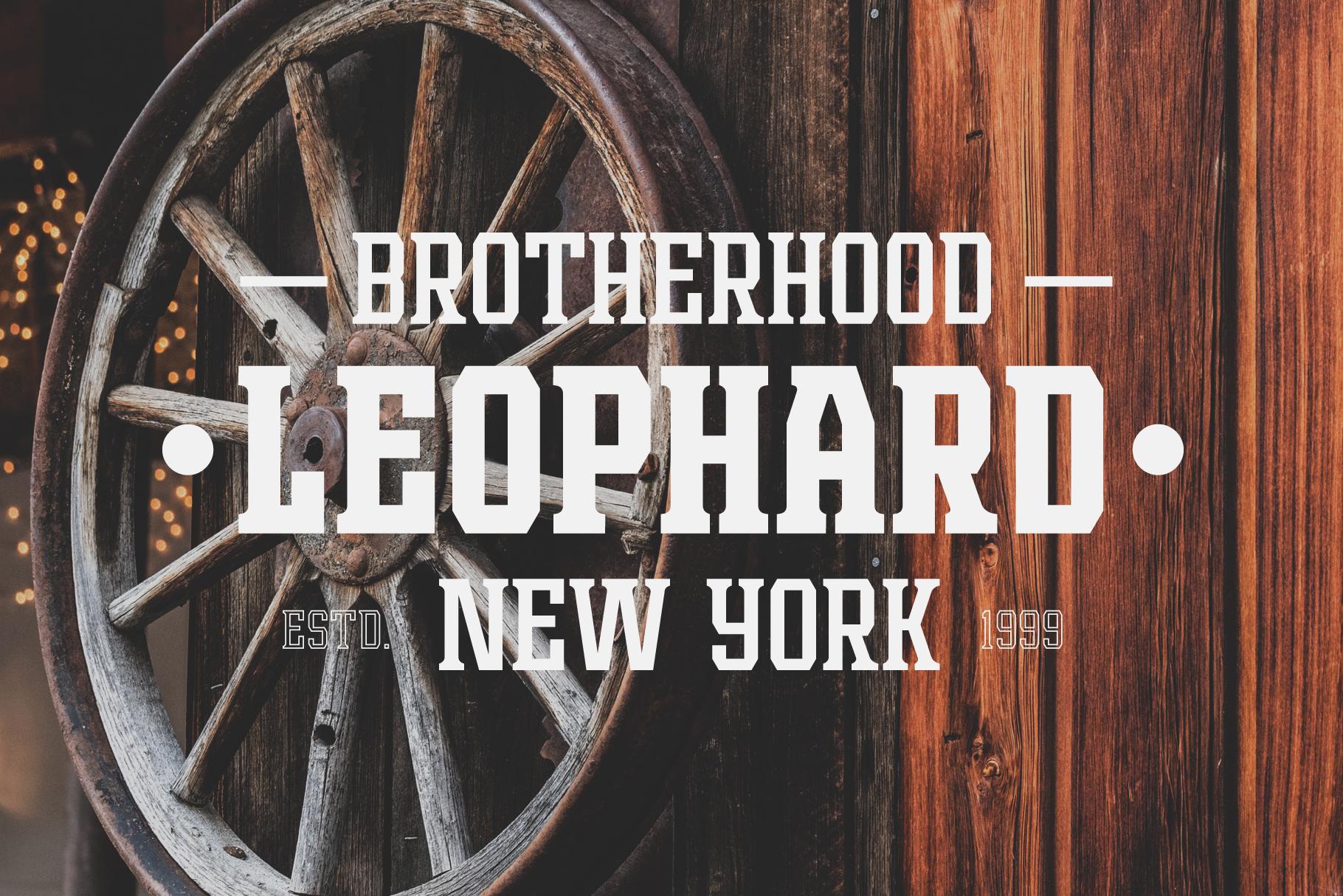 Leophard Font Family example image 3