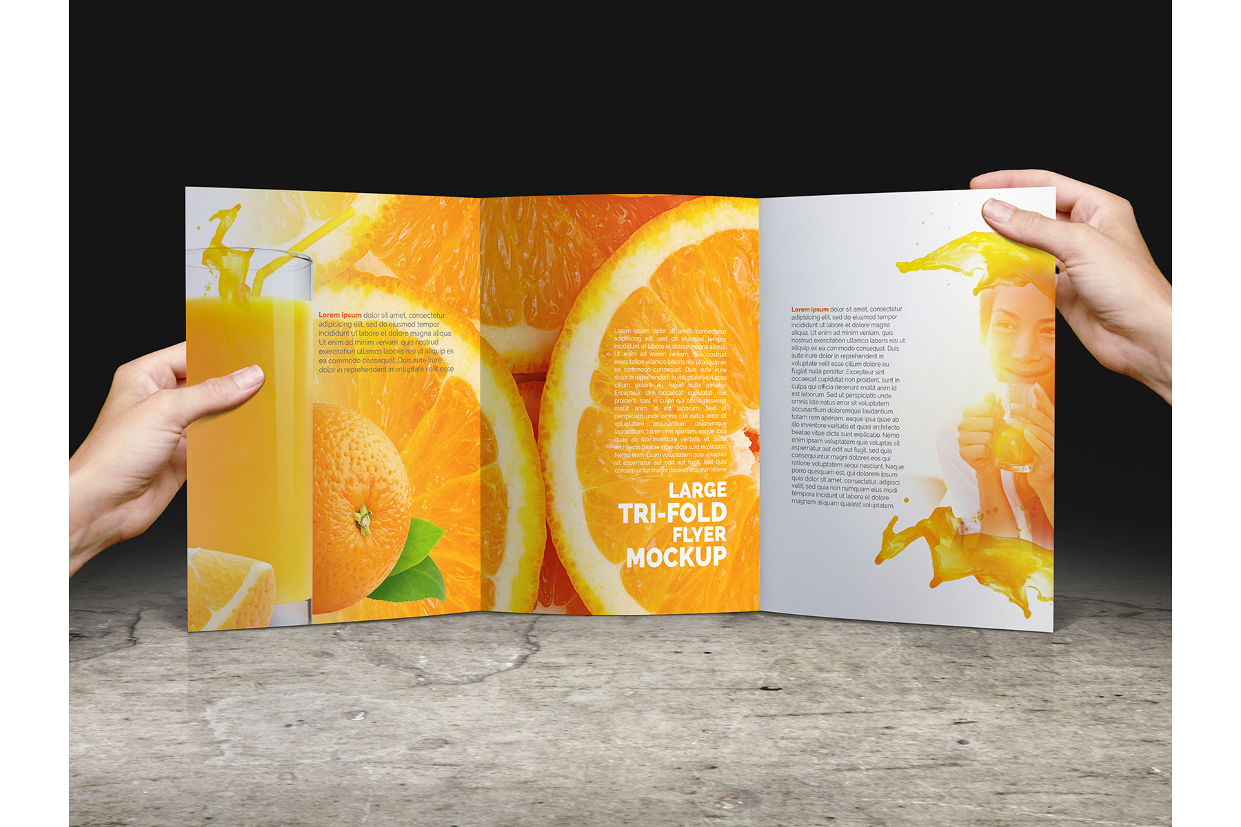 Large Trifold Brochure Mockup example image 11